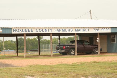 Noxubee County Farmers Market