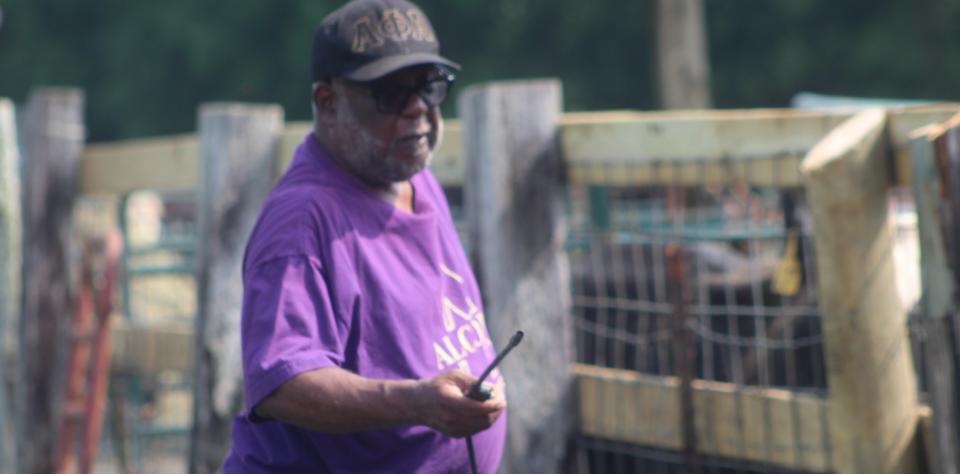 Cattle Health Program